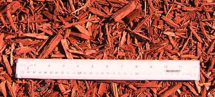 Mulch Express Red